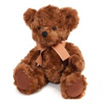 Brown Teddy