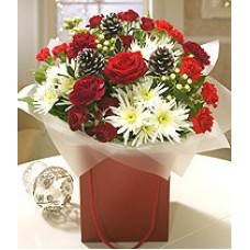Red & White Cone Aqua Handtied